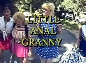 Coach Anal Granny.Full Integument :Kitty Foxxx, Anna Lisa, Sweetmeats Cooze, Gypsy Dispirited